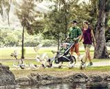 Thule Active with Kids